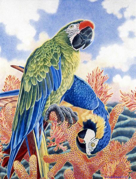 Blue Parrot Drawing - Astarte's Paradise II by Kyra Belan
