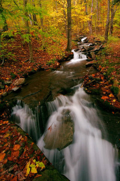 Catskills Photograph - Autumn In New York by Neil Shapiro