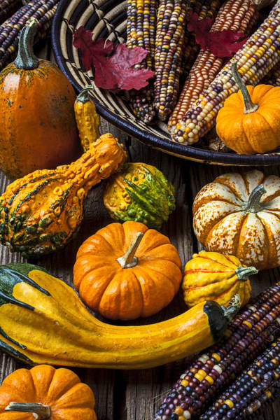 Gourd Photograph - Autumn Still Life by Garry Gay