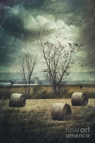 Photograph - Bales Of Hay In Field On A Rainy Day by Sandra Cunningham