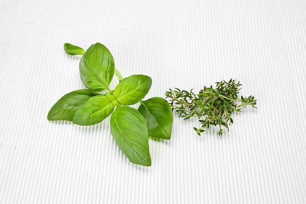 Herbs Photograph - Basil And Thyme by Joana Kruse