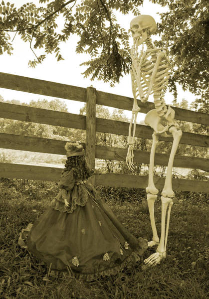 Bone Yard Wall Art - Photograph - Beyond The Fence by Betsy Knapp