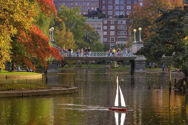 Photograph - Boston Public Garden by Joann Vitali