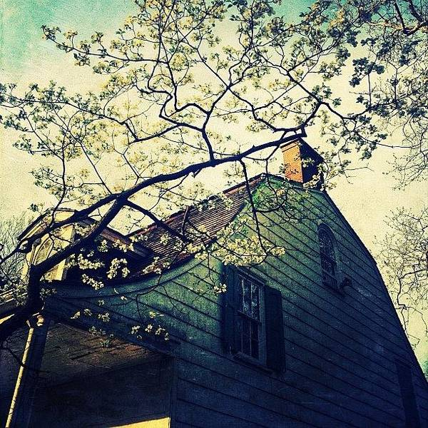 Home Wall Art - Photograph - Brooklyn's Pre-colonial Homestead by Natasha Marco