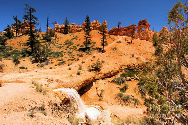 Photograph - Bryce Water Canyon by Adam Jewell