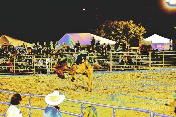 Prca Wall Art - Photograph - Bucked Off by Don Youngclaus