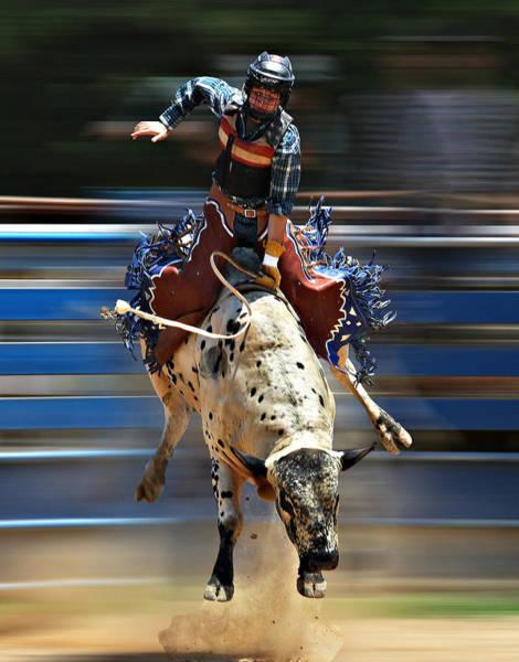 Photograph - Bull Rider 3 by Sheila Kay McIntyre