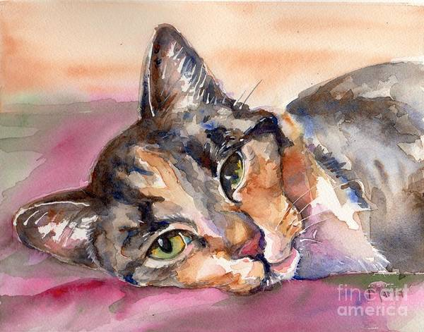 Calico Cat Painting - Calico Kitty by Maria's Watercolor