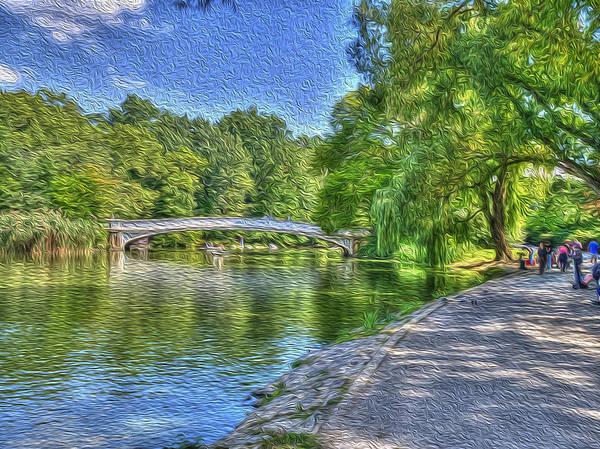 Photograph - Central Park by Paul Wear