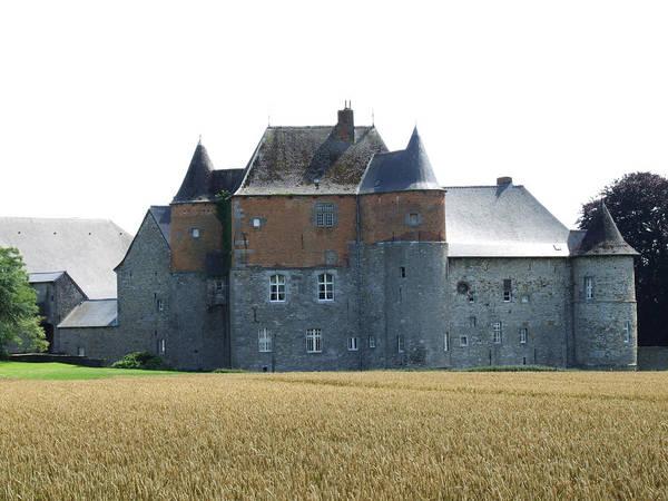 Chateau Fort De Feluy Belgium Art Print