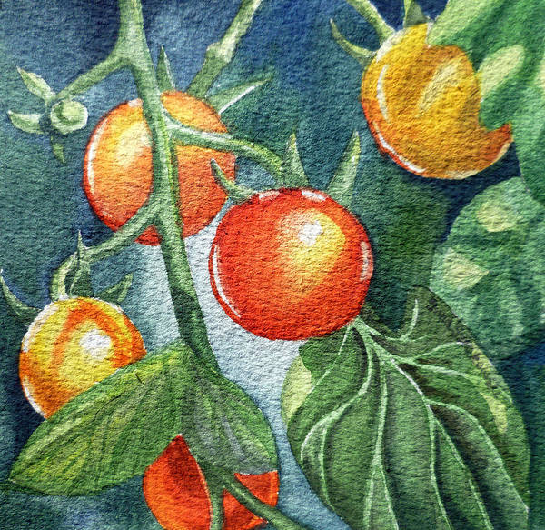 Veggies Painting - Cherry Tomatoes by Irina Sztukowski
