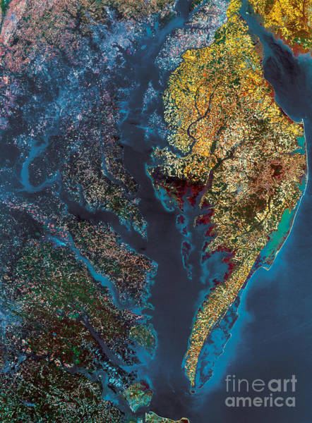 Wall Art - Photograph - Chesapeake Bay by Science Source