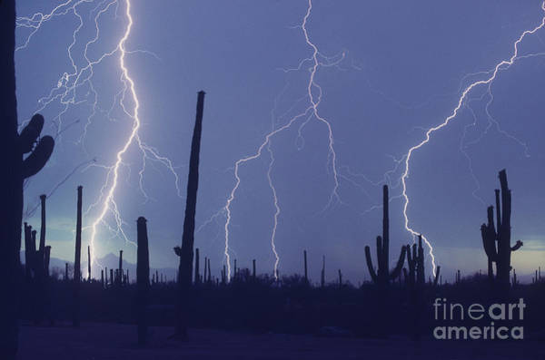 Photograph - Cloud To Ground Lightning by John A Ey III and Photo Researchers