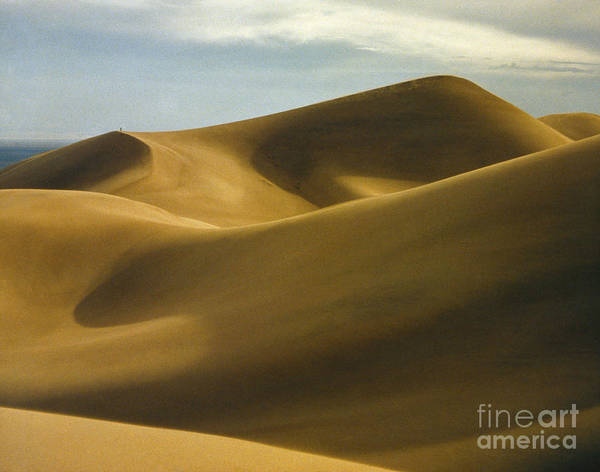 Photograph - Colorado: Sand Dunes by Granger