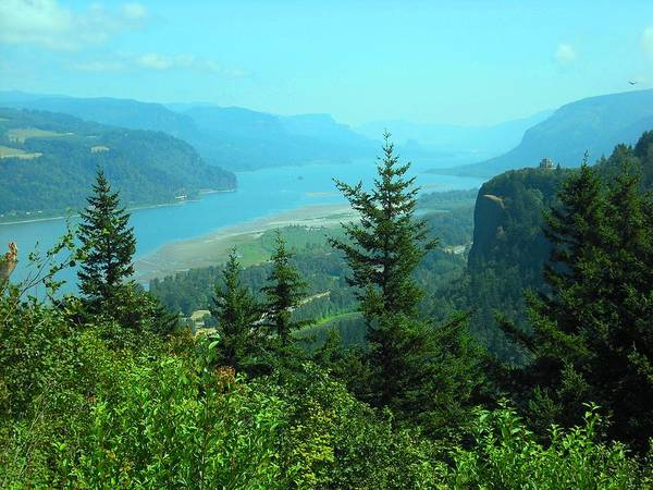 Photograph - Columbia River Gorge by Kelly Manning
