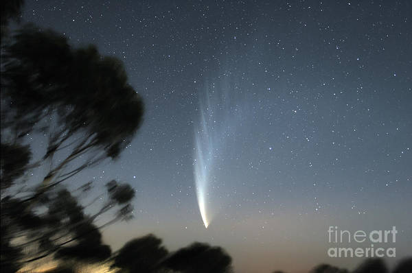 Mounted Shooting Photograph - Comet Mcnaught P1 by Philip Hart