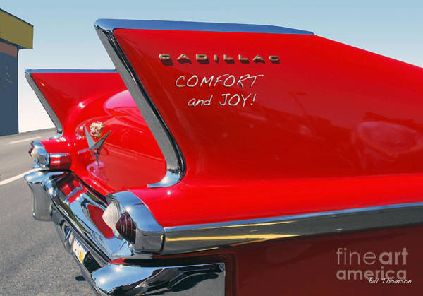Photograph - Comfort And Joy by Bill Thomson