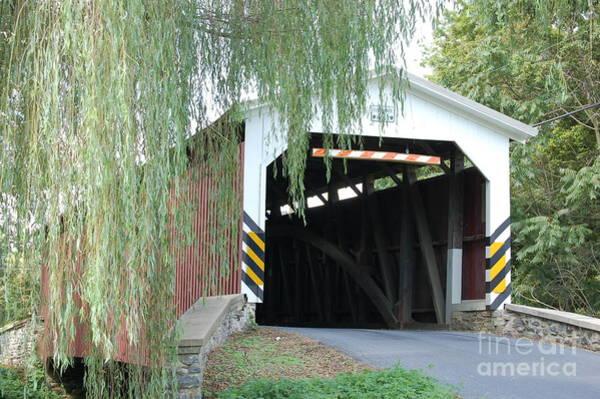 Photograph - Covered Bridge by Randy J Heath