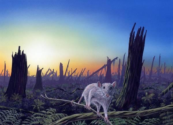 Blast Wave Wall Art - Photograph - Cretaceous-tertiary Extinction Event by Richard Bizley