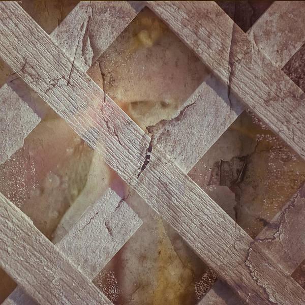 Photograph - Criss Cross by Trish Tritz