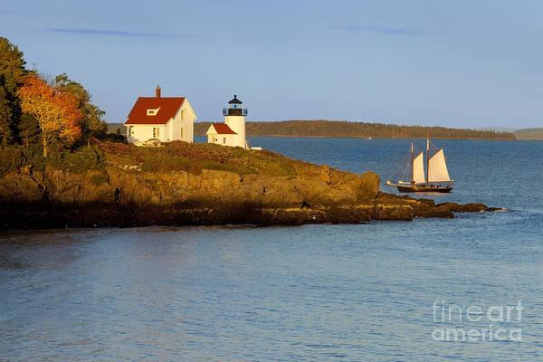 Wall Art - Photograph - Curtis Island Light by Brian Jannsen