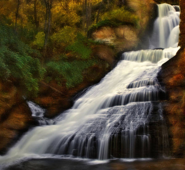 Photograph - Dingmans Falls by Susan Candelario