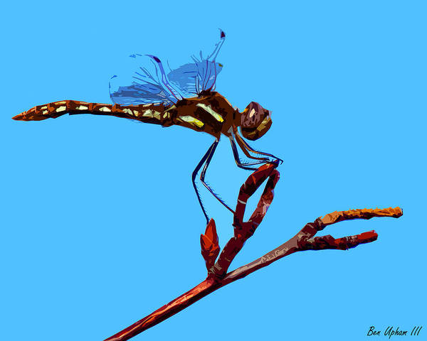 Photograph - Dragonfly Art by Ben Upham III