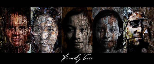 Wall Art - Painting - Family Tree by Christopher Gaston