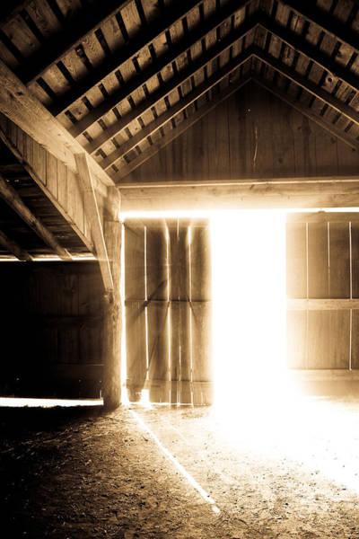Photograph - First Light by Elizabeth Hart