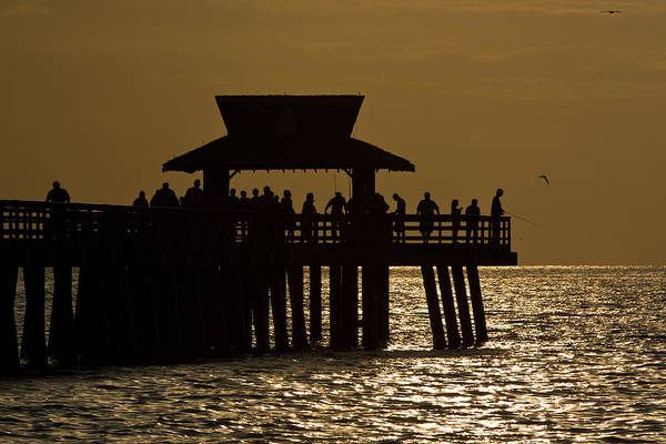 Photograph - Fishing At Naples Pier by Ed Gleichman
