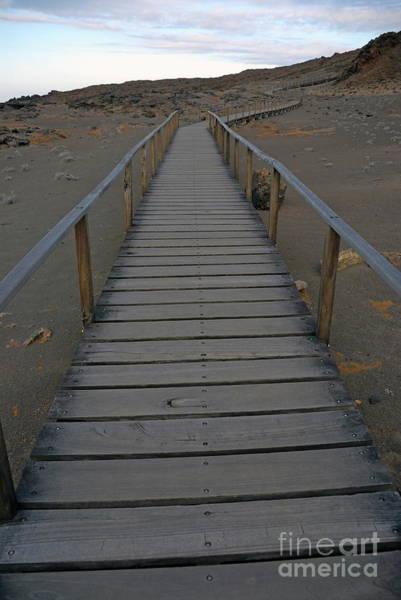 Wall Art - Photograph - Footbridge On Volcanic Landscape by Sami Sarkis
