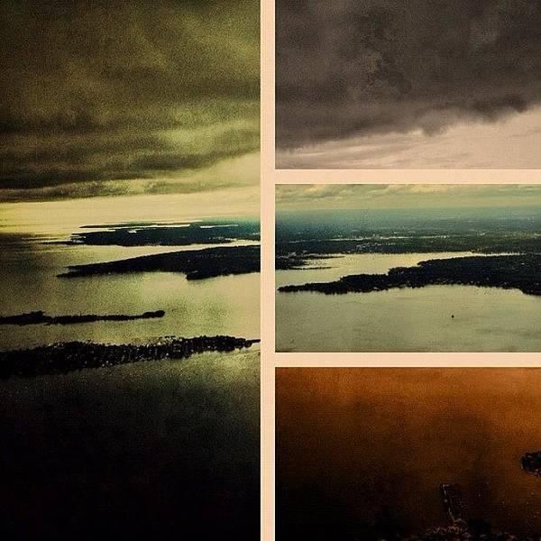 Wall Art - Photograph - Framed Flight by Natasha Marco