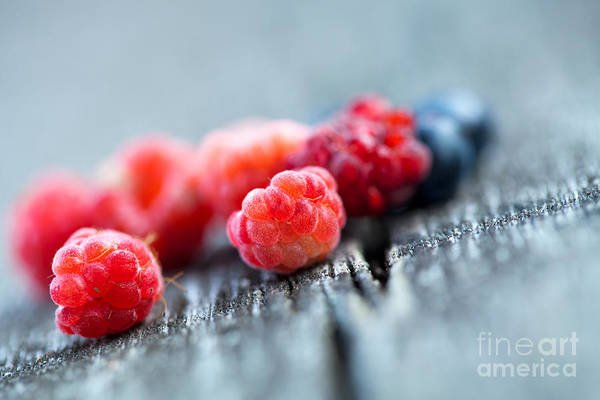 Bilberry Photograph - Fresh Berries by Kati Finell
