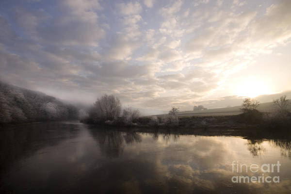 Frosty Morning Art Print by Angel Ciesniarska