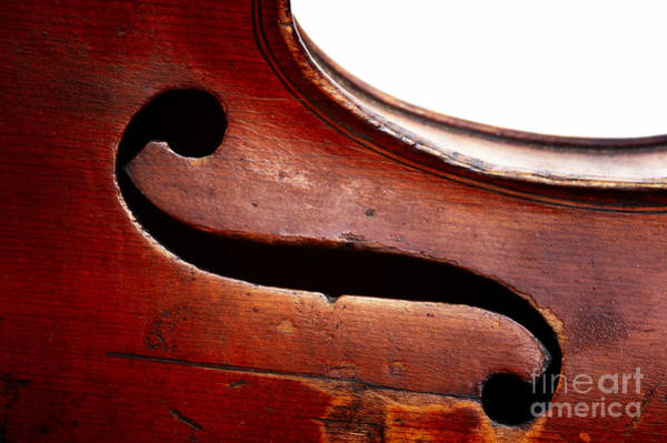 Violin Wall Art - Photograph - G Clef by Michal Boubin