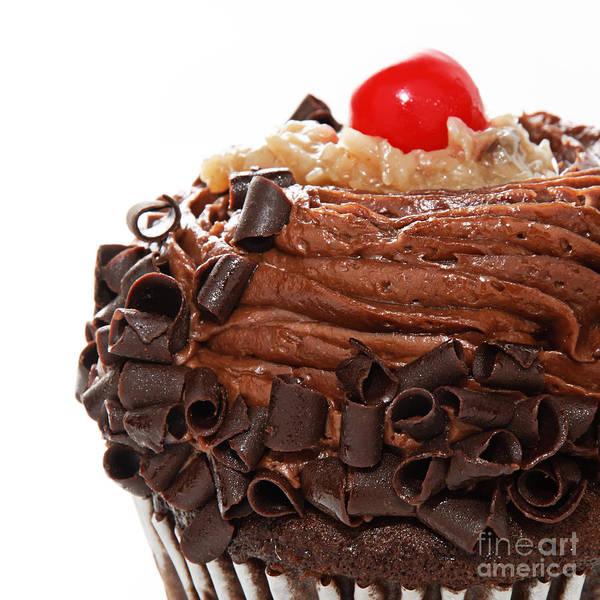 Photograph - German Chocolate Cupcake 3 by Andee Design