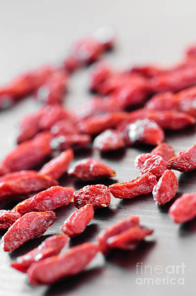 Wall Art - Photograph - Goji Berries by Elena Elisseeva