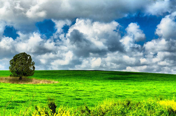 Photograph - Green Field by Michael Goyberg
