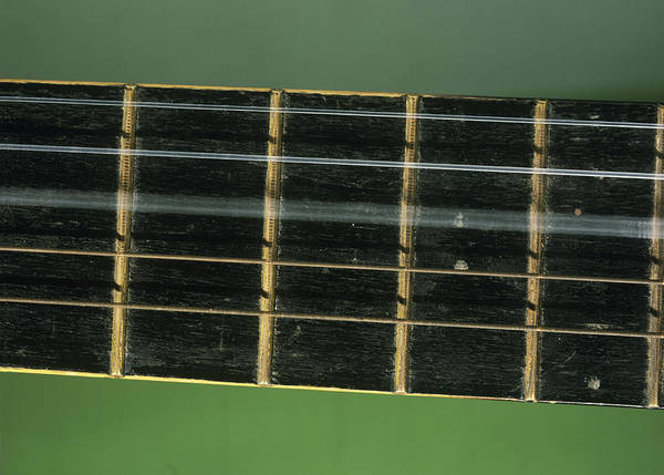 Fret Board Photograph - Guitar String Vibrating by Andrew Lambert Photography