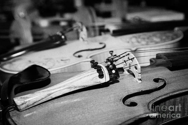 Wall Art - Photograph - Homemade Handmade Violins Made Of Different Materials And Shapes by Joe Fox
