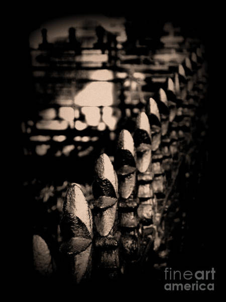 Photograph - Iron Fence by Susanne Van Hulst