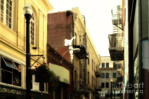 Photograph - Jack Kerouac Street San Francisco . 7d7437 by Wingsdomain Art and Photography
