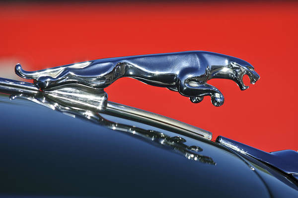Photograph - Jaguar Hood Ornament by Jill Reger