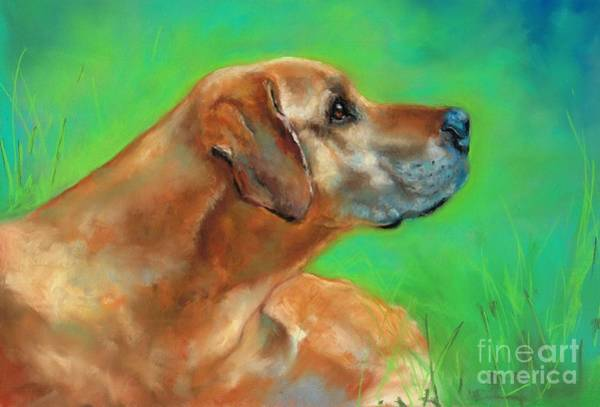 Pastel - Jasper by Frances Marino