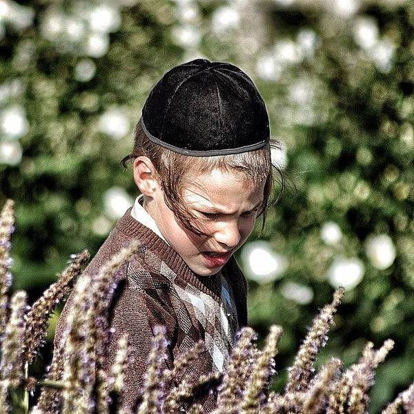 Religious Wall Art - Photograph - Jewish Boy - New York by Joel Lopez