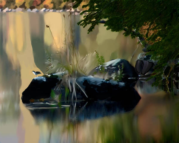 Digital Art - Lake At Groton Vt by Jim Proctor