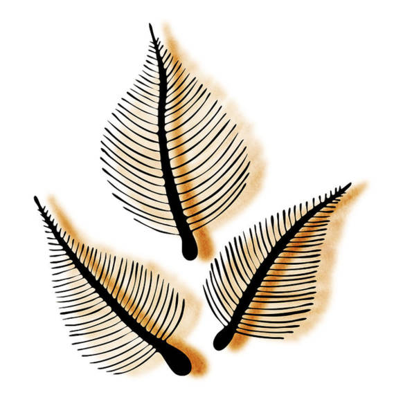Leaves Art Print by Frank Tschakert