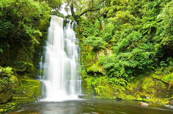Photograph - Mac Lean Falls In The Catlins by U Schade