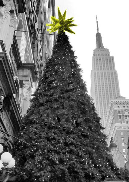 Wall Art - Photograph - Macys Star by Francis Flatley