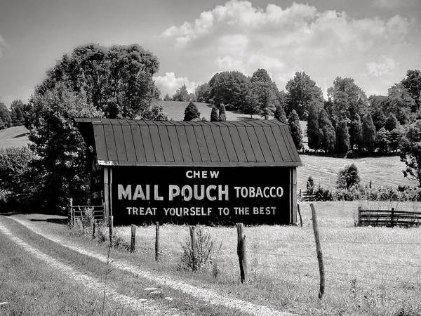 Photograph - Mail Pouch Barn by Mary Almond